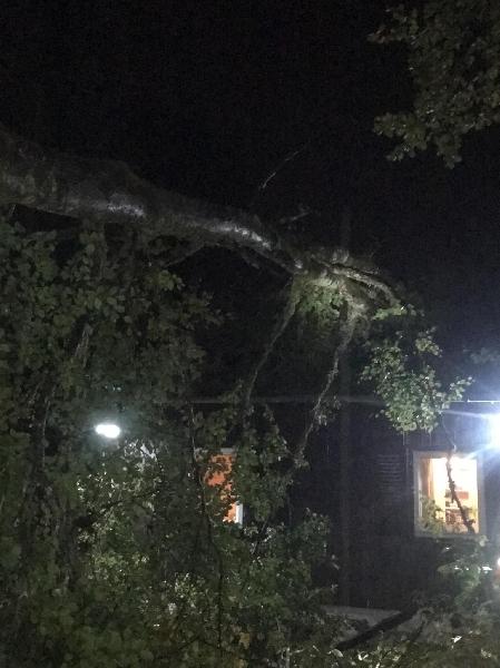 technische Hilfeleistung, Sturm/Unwetter